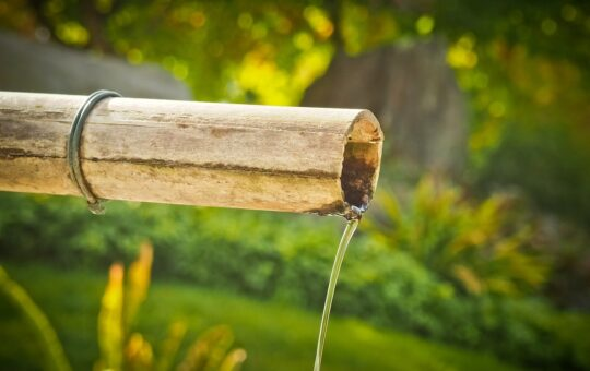 créer coin zen jardin